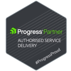 Progress Service Delivery Partner